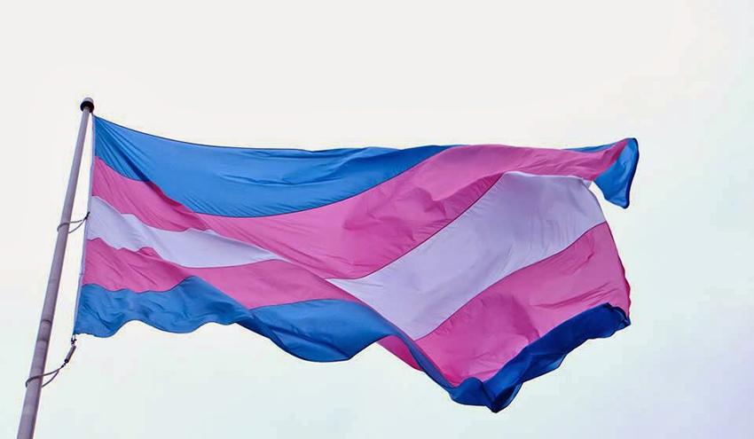 Encontre pessoas trans e travestis